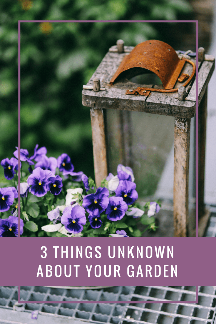 3 Things Unknown About Your Garden A Few Favourite Things